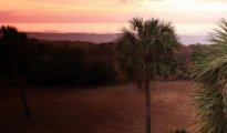 Isle of Palms photo #10