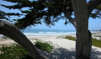 Carpinteria photo #10