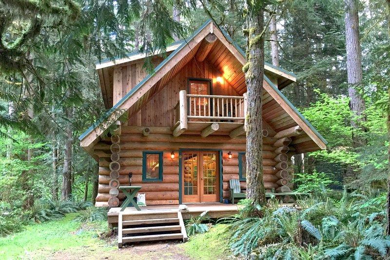 Mt baker cabin vacation rentals washington state for Mount baker cabins