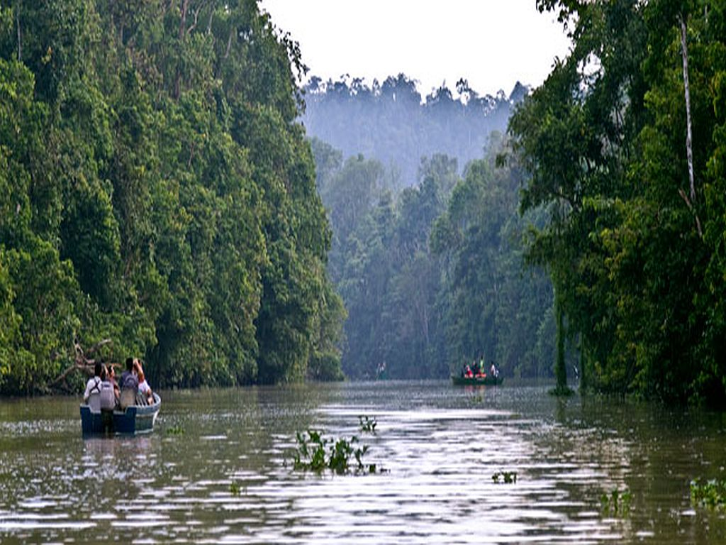 Malaysia Tour Package Borneo River Cruise