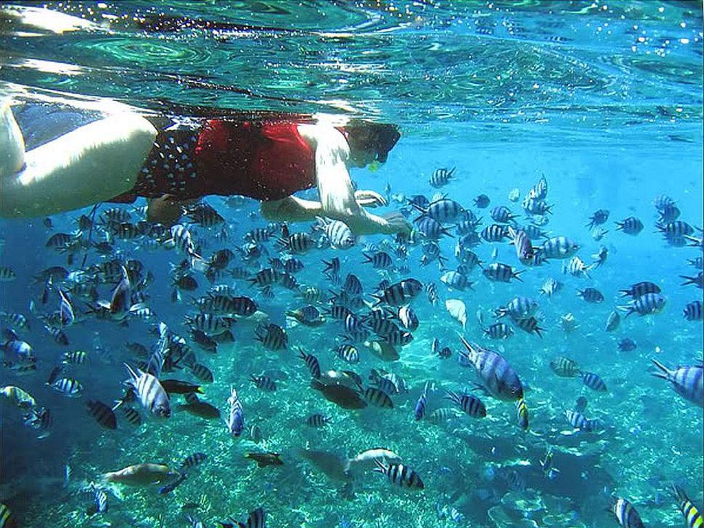 Malaysia Tour Package Redang Island Resortterengganu