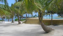 Ambergris Caye photo #5