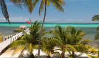 Ambergris Caye photo #8